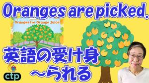 動画38オレンジ